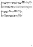 Gortoz Toucan - 2